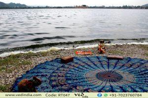 Blue & Brown Peacock Roundie Bedspread